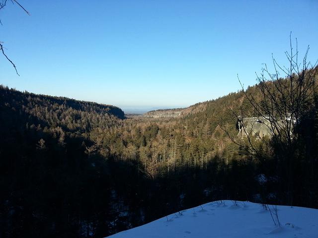 织女山生态风景区_2021最后一站长白山地下森林,面积很大,进去后游览一次再出来 ...