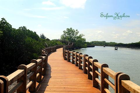 东寨港红树林旅游景点攻略图
