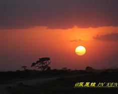 肯尼亚非洲狂野SAFARI全攻略