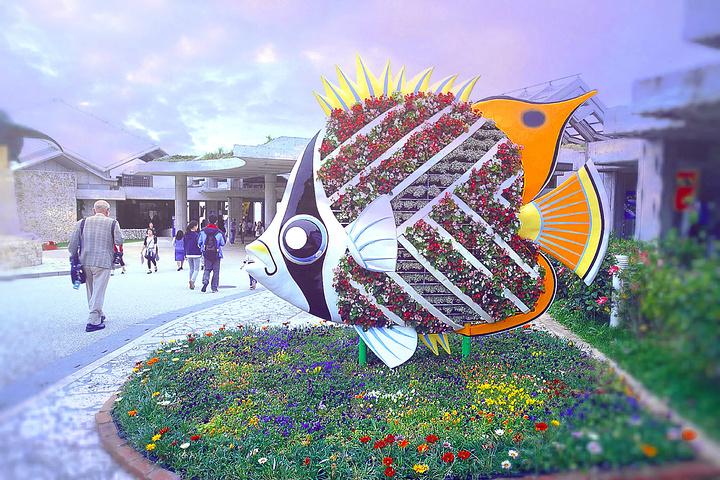"""""""自助餐菜品很丰富_冲绳美丽海水族馆""""的评论图片"""