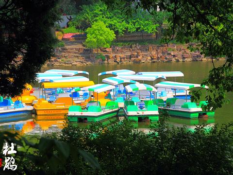 锡惠公园旅游景点图片