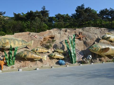 海之韵公园旅游景点图片