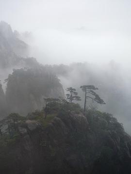 白鹅岭旅游景点攻略图