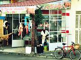 杰尔巴岛旅游景点攻略图片