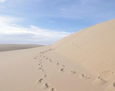 一半是海水一半是沙漠——一起去美奈