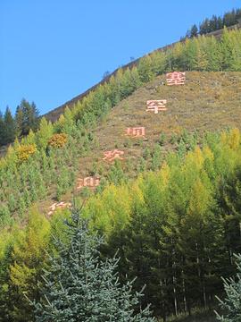 河北省塞罕坝机械林场总场大唤起林场旅游景点攻略图