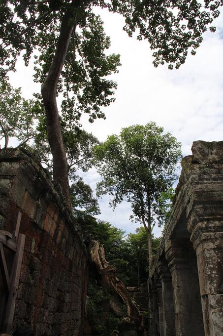 圣剑寺图片