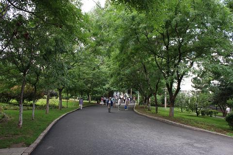 望溪公园旅游景点攻略图