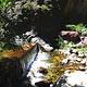 小五台山自然保护区
