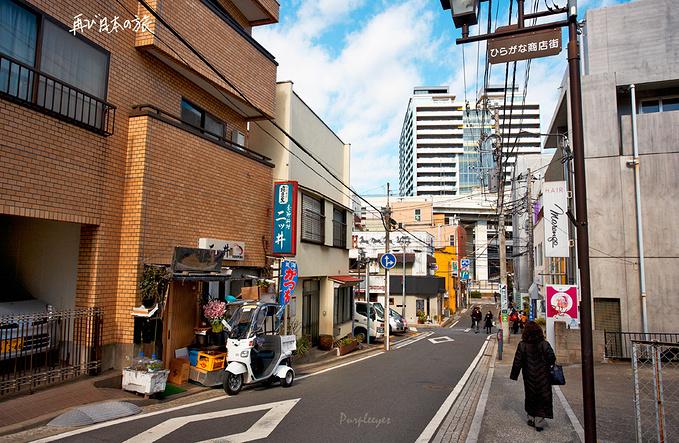 抵达横滨图片