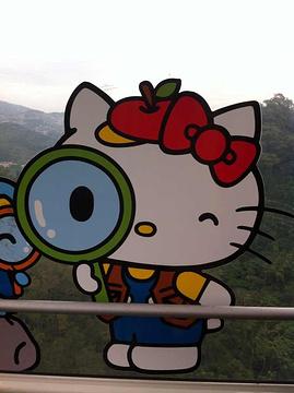 猫空旅游景点攻略图