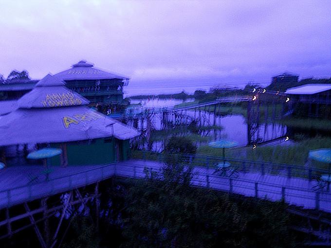清晨的亚马逊图片