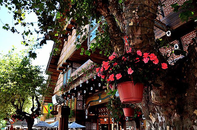 久东平原小镇图片