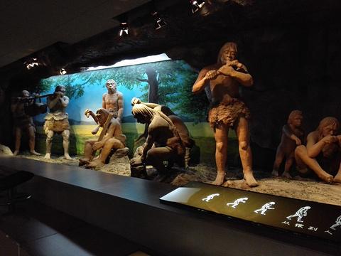 本溪博物馆旅游景点图片