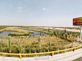 阿拉善左旗旅游景点攻略图片