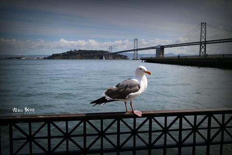 旧金山湾旅游景点攻略图