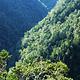 凤凰山国家森林公园