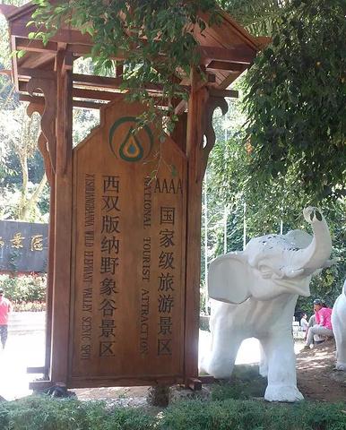 """""""360度转身走独木桥等好看的节目,部分节目结束后大象会绕着表演场地转圈找食物,里面有卖大象的食..._野象谷""""的评论图片"""