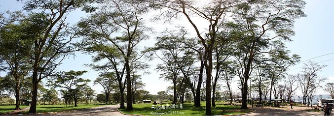 纳库鲁湖图片