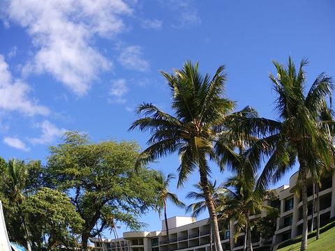 哈普那王子高尔夫球场旅游景点图片