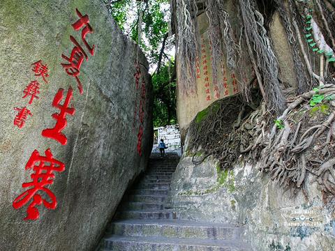 日光岩旅游景点图片