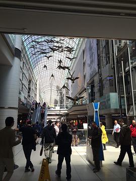 多伦多伊顿中心旅游景点攻略图