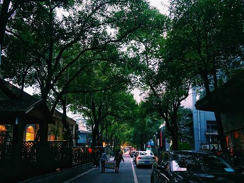 樟树林文化生活公园旅游景点图片