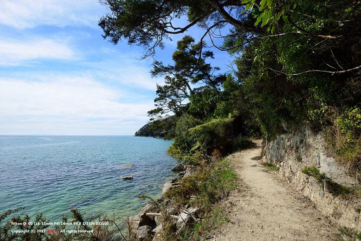 """""""是新西兰最小的国家公园, 非常适合徒步_阿贝尔·塔斯曼国家公园""""的评论图片"""