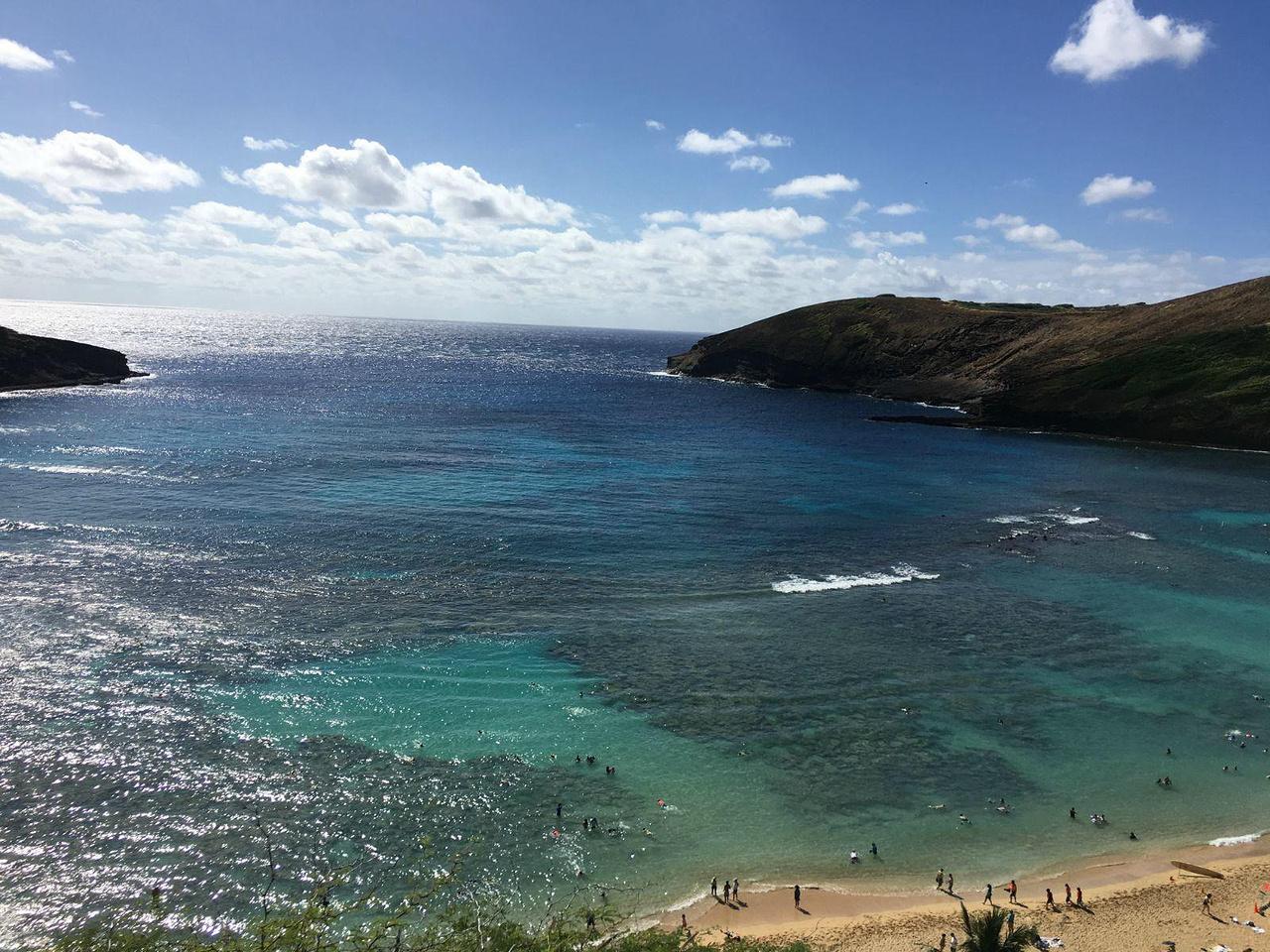 友人同游夏威夷