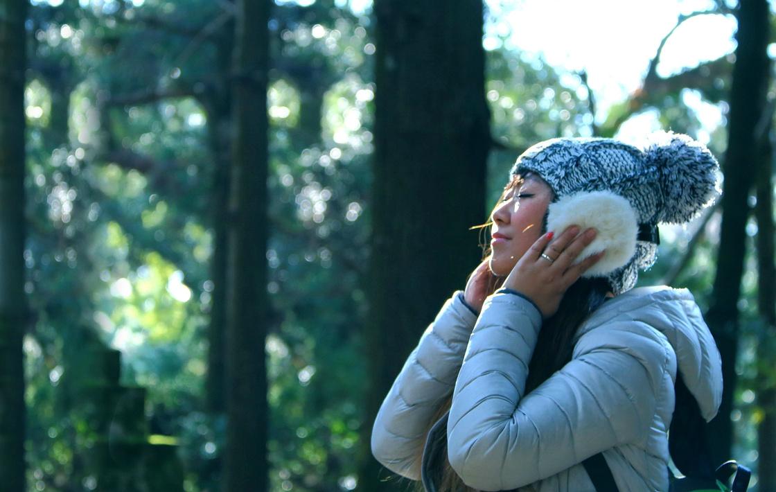 【冬の関西】大阪-京都-奈良自由行5天