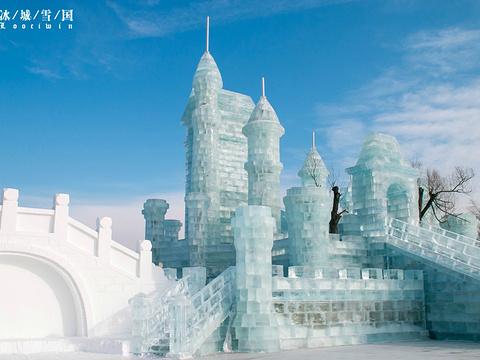 太阳岛雪博会旅游景点图片