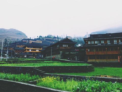 黄洛瑶寨的图片