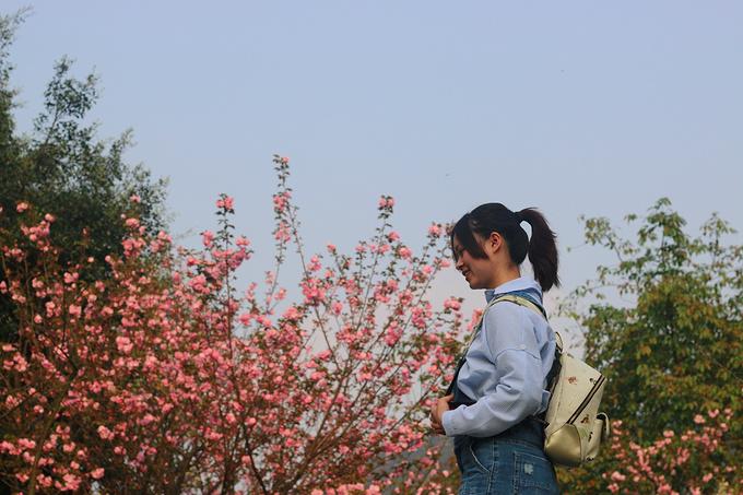 重庆邮电大学图片