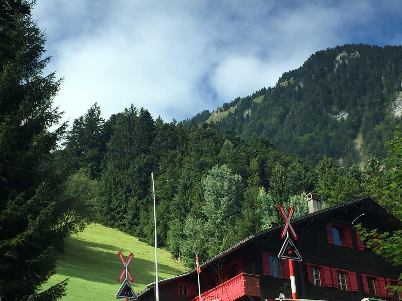 西游记之初进瑞士