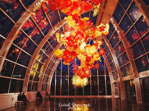奇胡利玻璃艺术园旅游景点图片