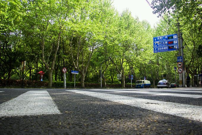 衡山路图片
