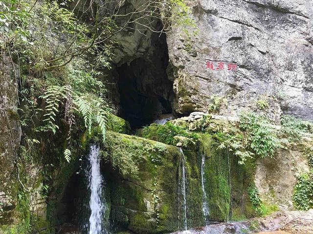 """""""景区内风景秀丽,十分迷人,原始植被,峡谷幽深,急流的深潭,飞下的瀑布,组成了一个如此雄伟壮丽的风景_龙水峡地缝""""的评论图片"""