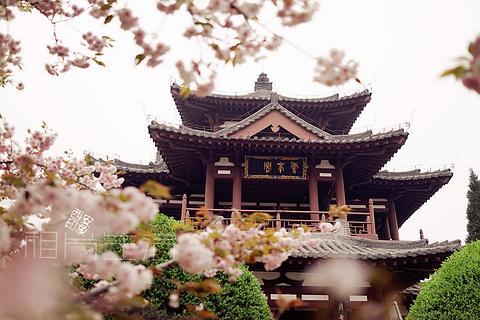 青龙寺的图片