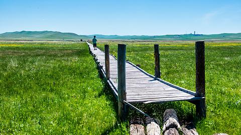 锡林郭勒草原