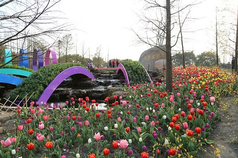 上海植物园旅游景点攻略图