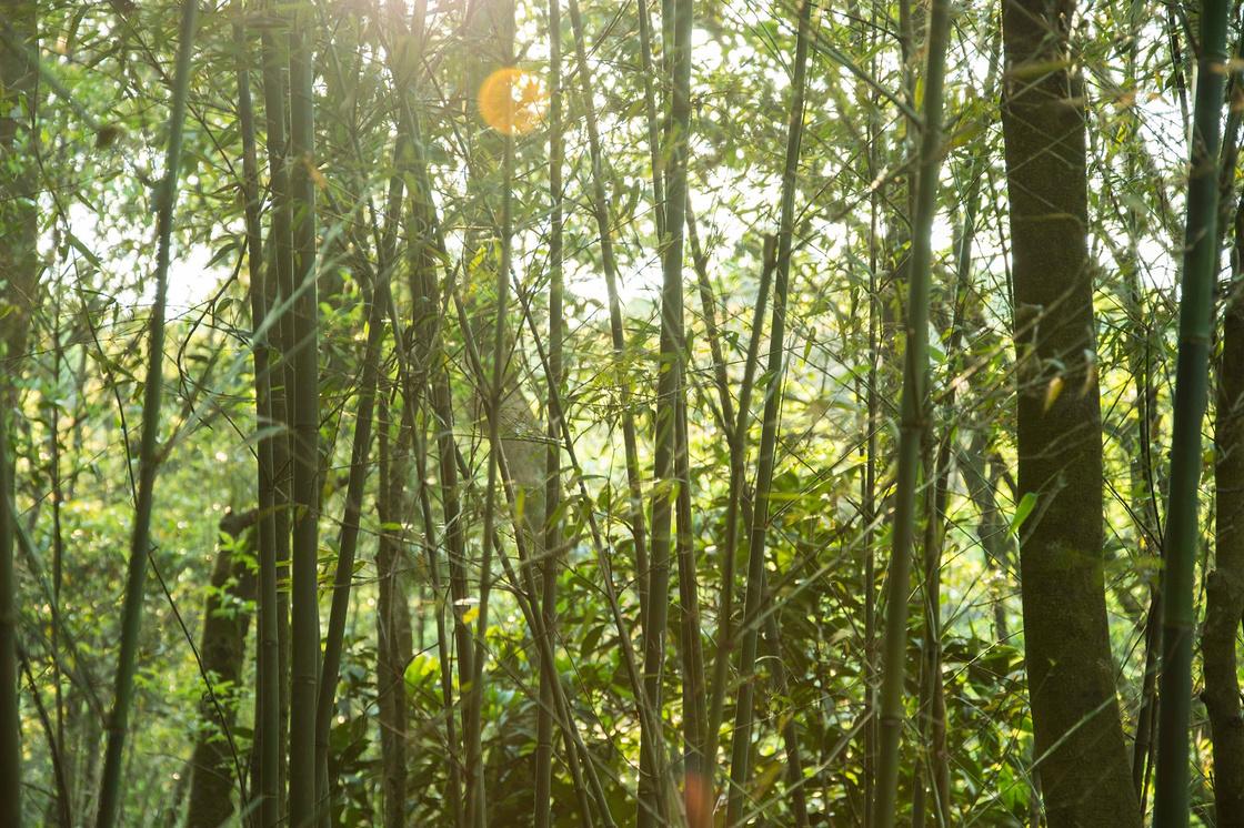 惠州四方山两天一夜重装穿越