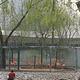 郑州市动物园