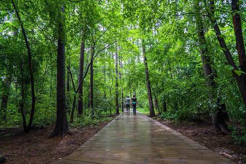 贵阳森林公园旅游景点攻略图