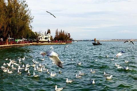 滇池旅游景点攻略图