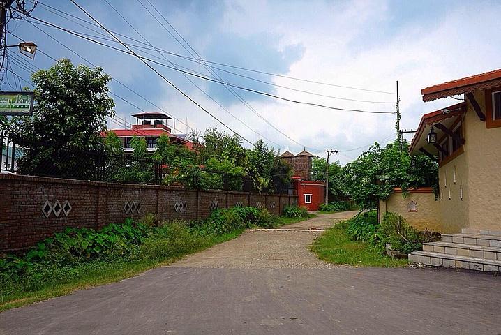 2019   Park Chitwan,位于奇特旺国家森林公园附近,环境优美,房间内部