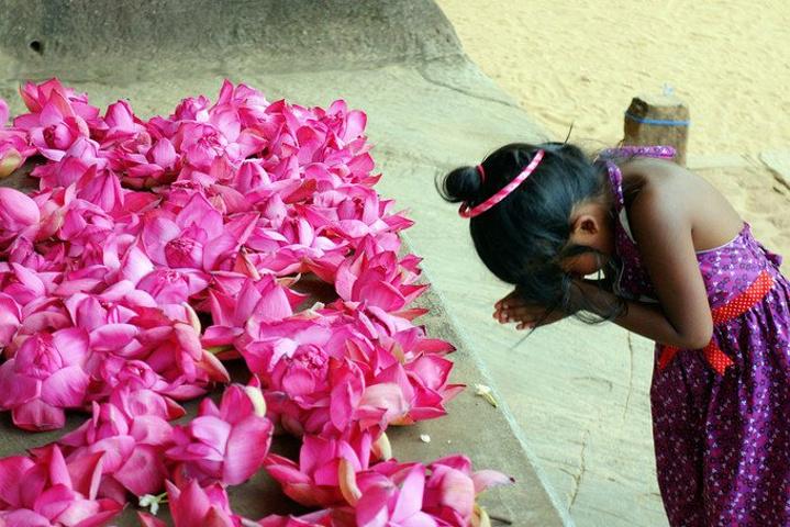 """""""本地人很崇拜的一个地方,经常可以看到当地人虔诚地在佛像前面祷告莲花前,默默许下心愿的小女孩_加尔寺""""的评论图片"""
