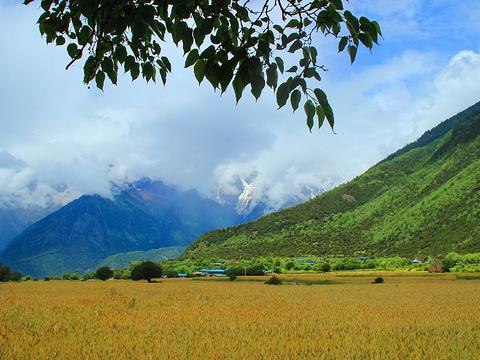 雅鲁藏布大峡谷旅游景点图片
