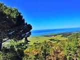 加利福尼亚州旅游景点攻略图片