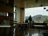 塔斯马尼亚旅游景点攻略图片