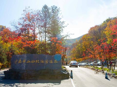 绿石谷旅游景点图片